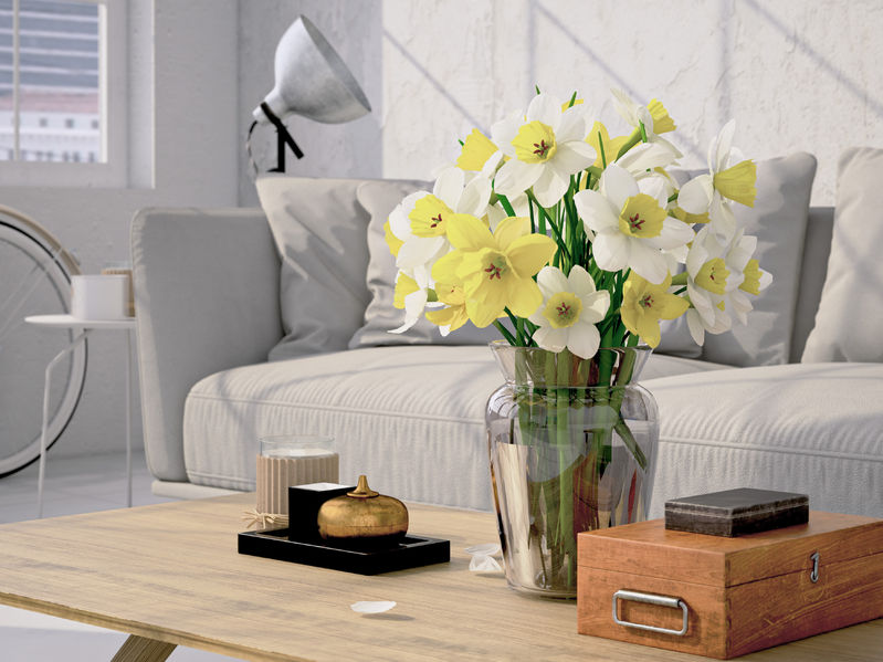 Give Your Home a Fresh Look This Spring With These Simple Ideas