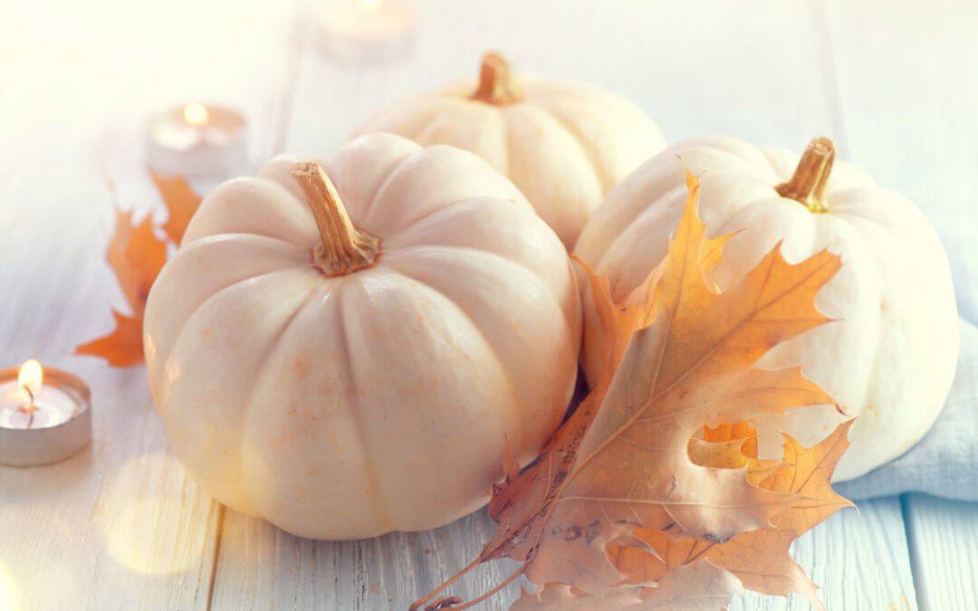 Hosting Thanksgiving This Year? 5 Tips to Get Your Home Ready!