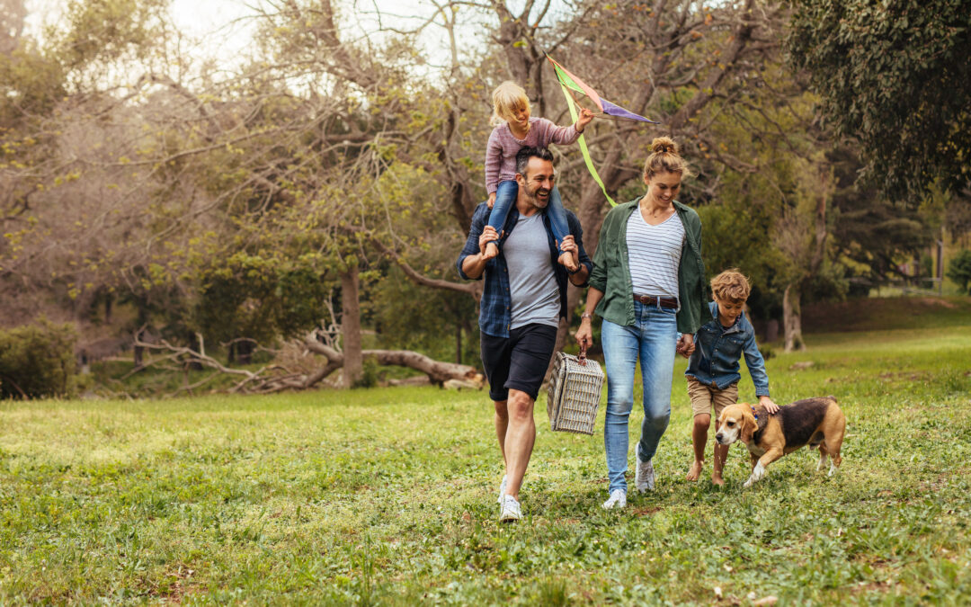 Fun and safe activities the whole family can enjoy this spring!